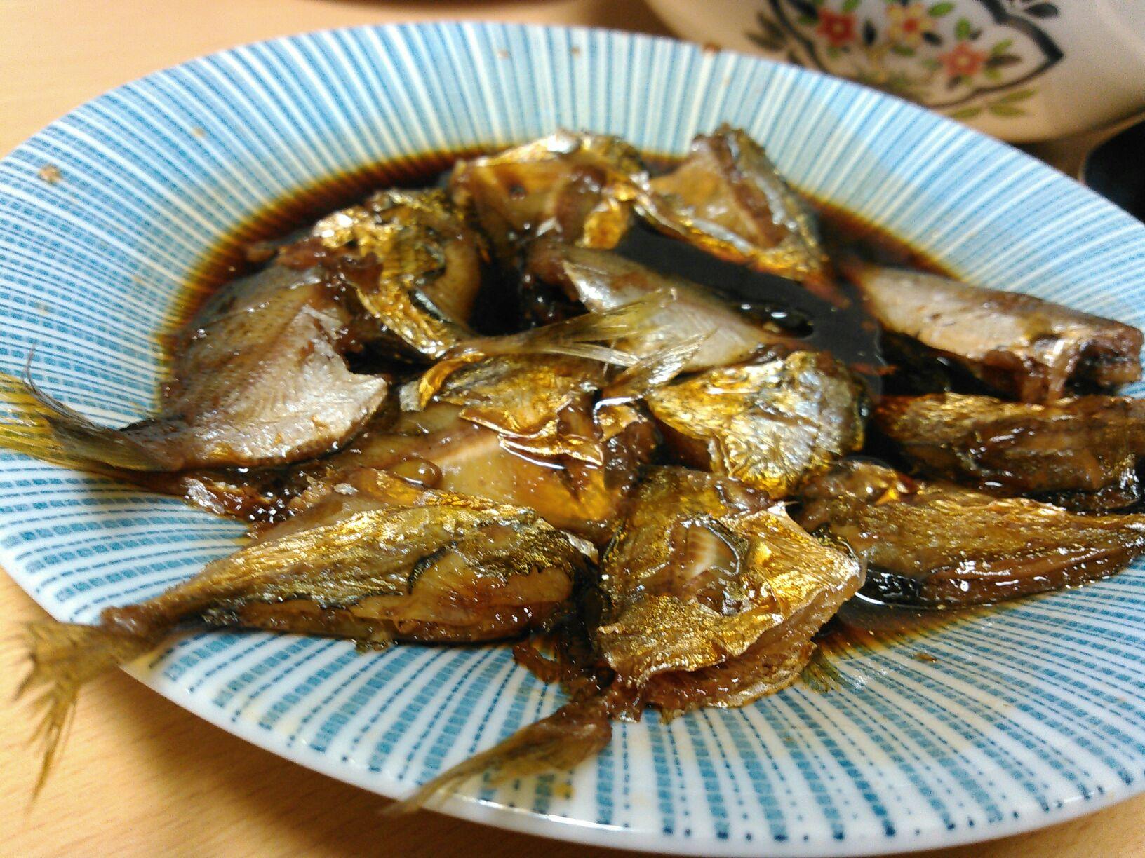 子供でも簡単に釣れるヒイラギ。実は美味しいお魚なんです!