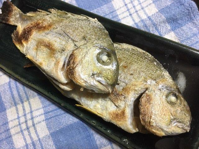 沖でのフグ釣りで外道として釣れたヘダイを塩焼きで頂きました。