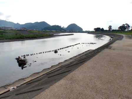 瀬戸川 ( 瀬戸川緑地・中公園 )メイン画像