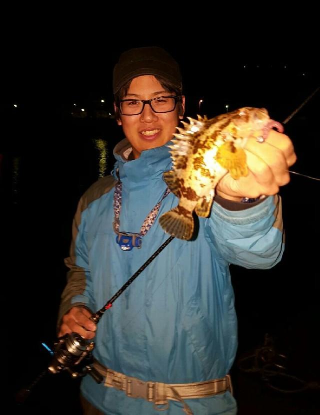 虫ヘッド3g+青イソメで根魚簡単に釣れます!