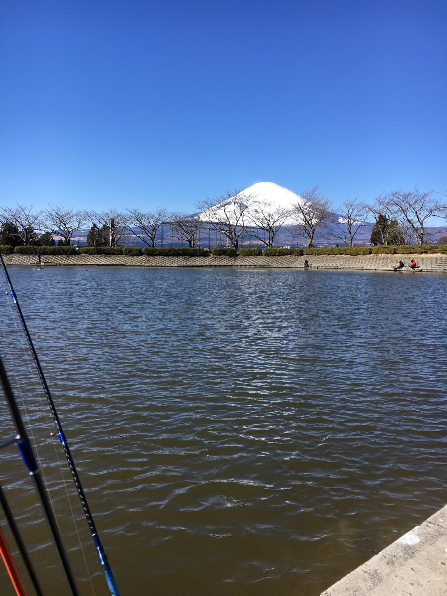 フィッシング 東山 エリア 湖