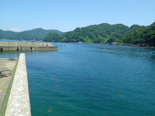 宇久漁港(うく) 【福井県】メイン画像