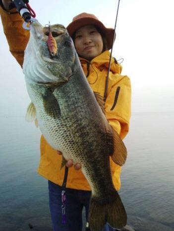 琵琶湖 メイン画像