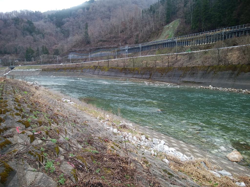 岐阜県宮川渓流ルアー釣行 釣具のイシグロ  釣り情報サイト