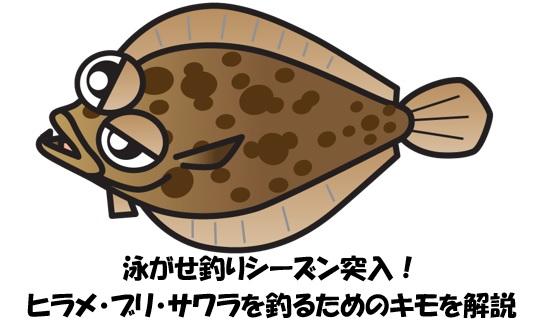 時期 ヒラメ 釣れる