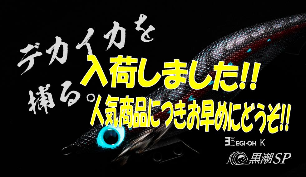 王 k スペシャル エギ 黒潮