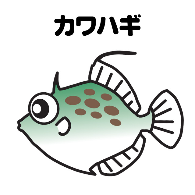 堤防のカワハギ釣りメイン画像