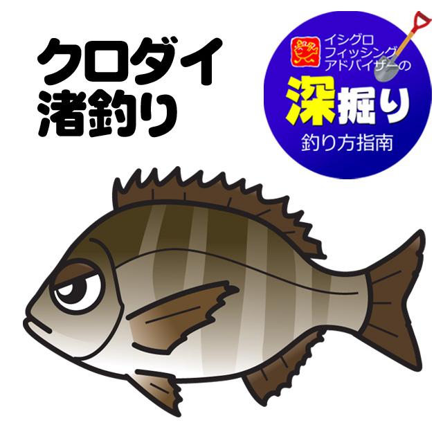 クロダイ渚釣り<深掘り>