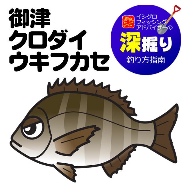 御津 クロダイウキフカセ釣り<深掘り>
