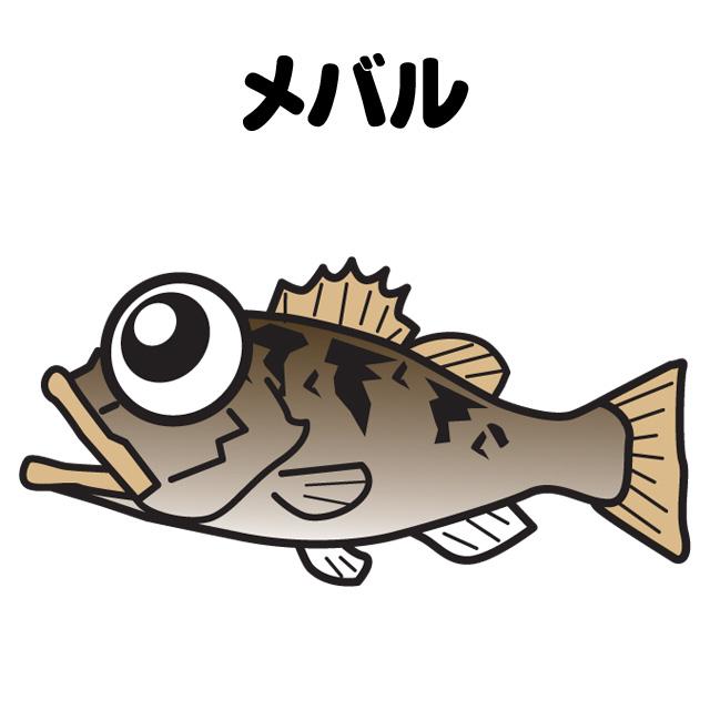 メバルの胴突ミャク釣りメイン画像