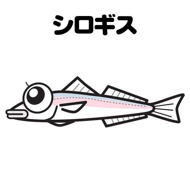 シロギスの投げ釣りメイン画像