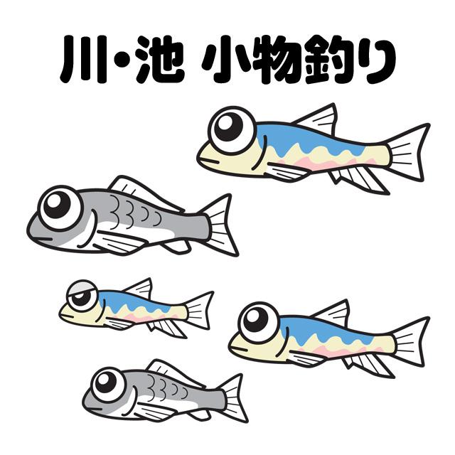 川・池の小物釣りタナゴ釣りメイン画像