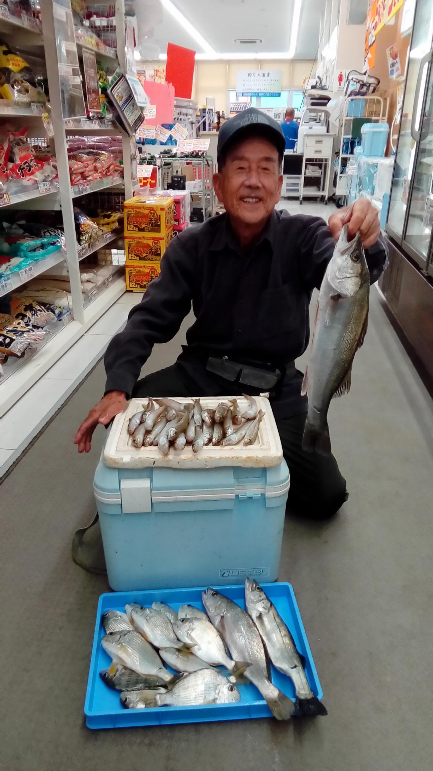 キス24匹、ヘダイ12匹、イシモチ1匹、スズキ2匹と多彩な釣果。