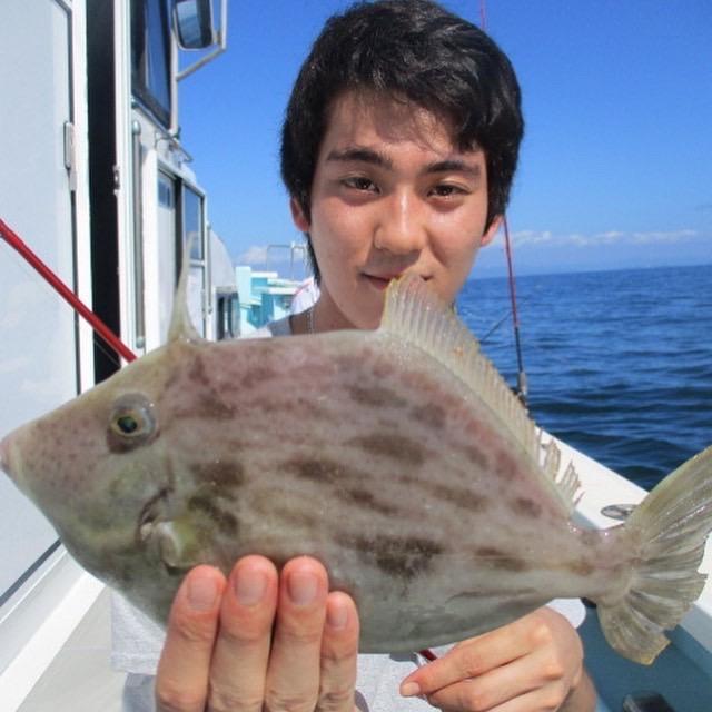 こちらの常連様はキョーイチの内湾デラ旨❷❽㌢デカハギを釣り上げましたよッ(°▽°)