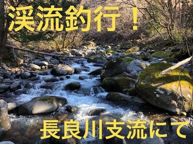 長良川支流での釣行!