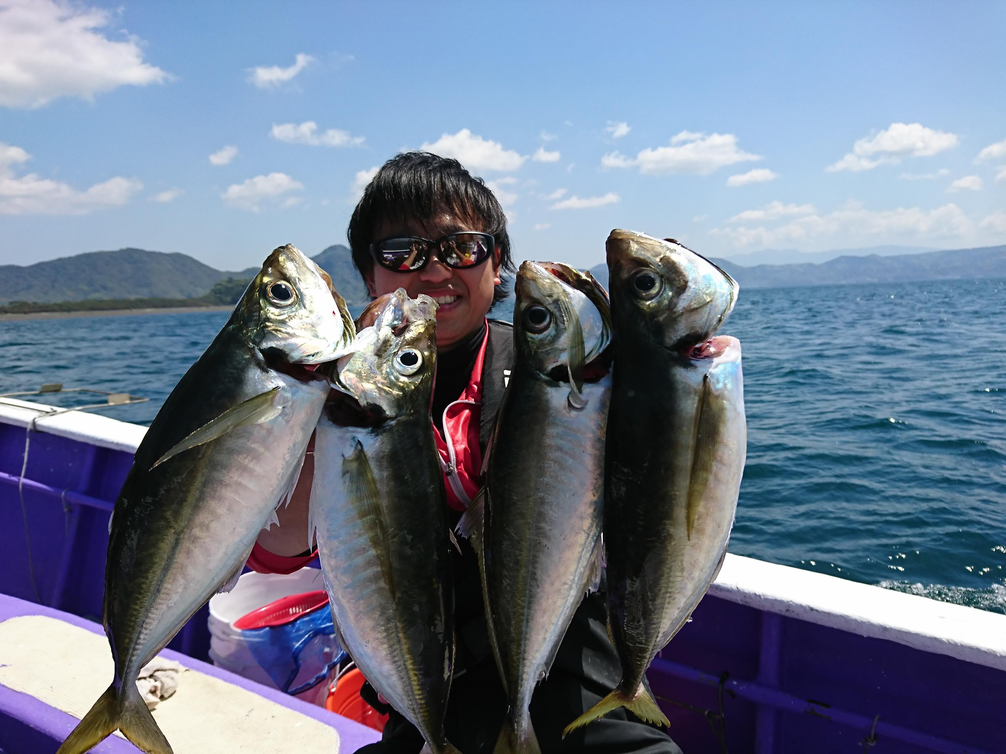 沼津沖で良型の絶品アジが釣れております!!