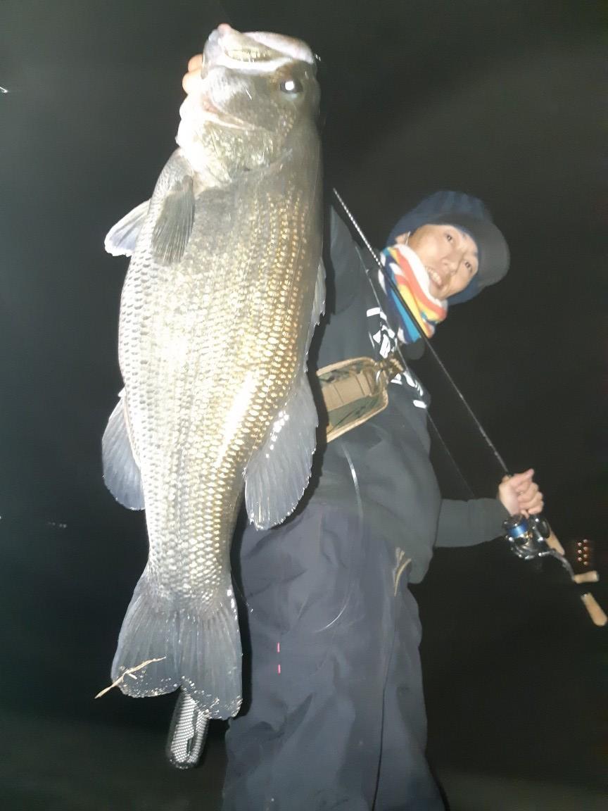 情報 琵琶湖 バス 釣り