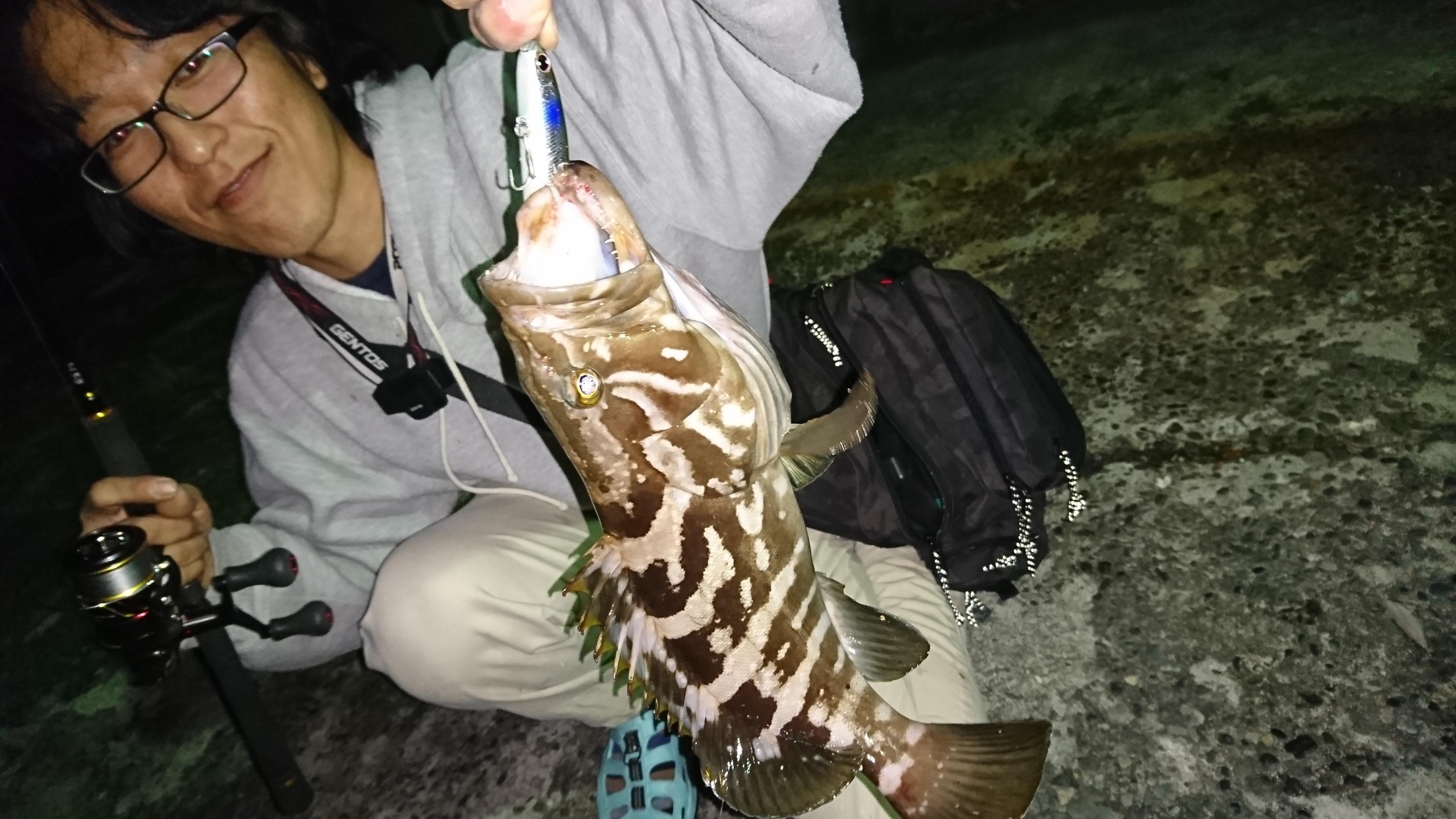 夕マヅメから釣行し、暗くなってからヒットしました。
