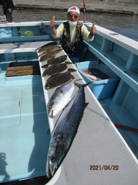 いつもの常連様は初春ビラメにメタボザワラにワラサにデカマゴチにデラ釣りましたッ(^-^)