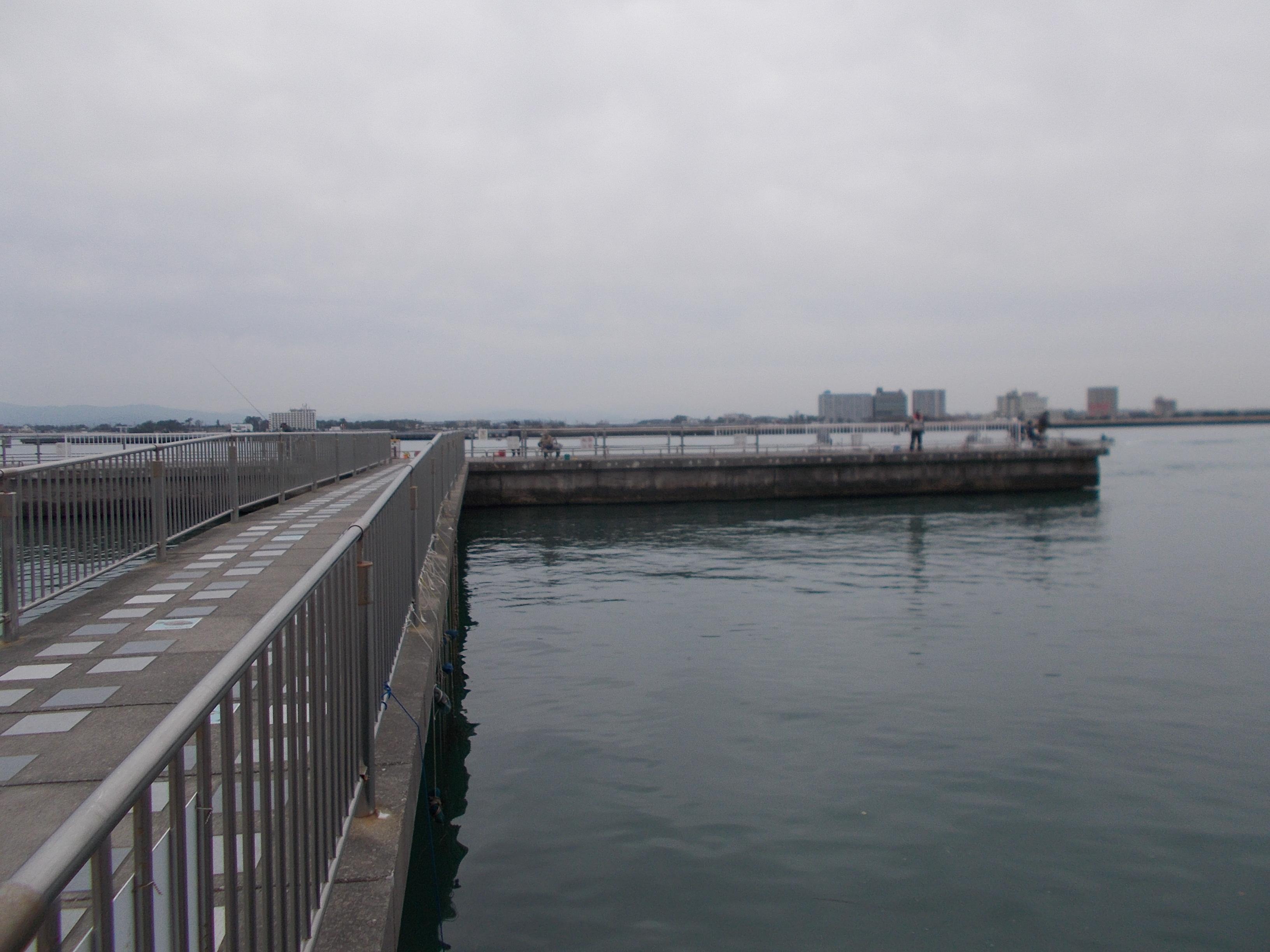 T字提にわたっても岸からでも狙えます、平日でしたが釣り人は多かったです。