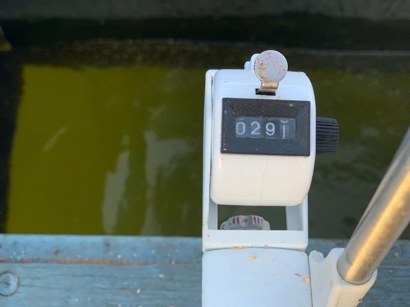 300匹に届かず撃沈・・・電動2台で手返しよく釣りをしている方は好調果でした!