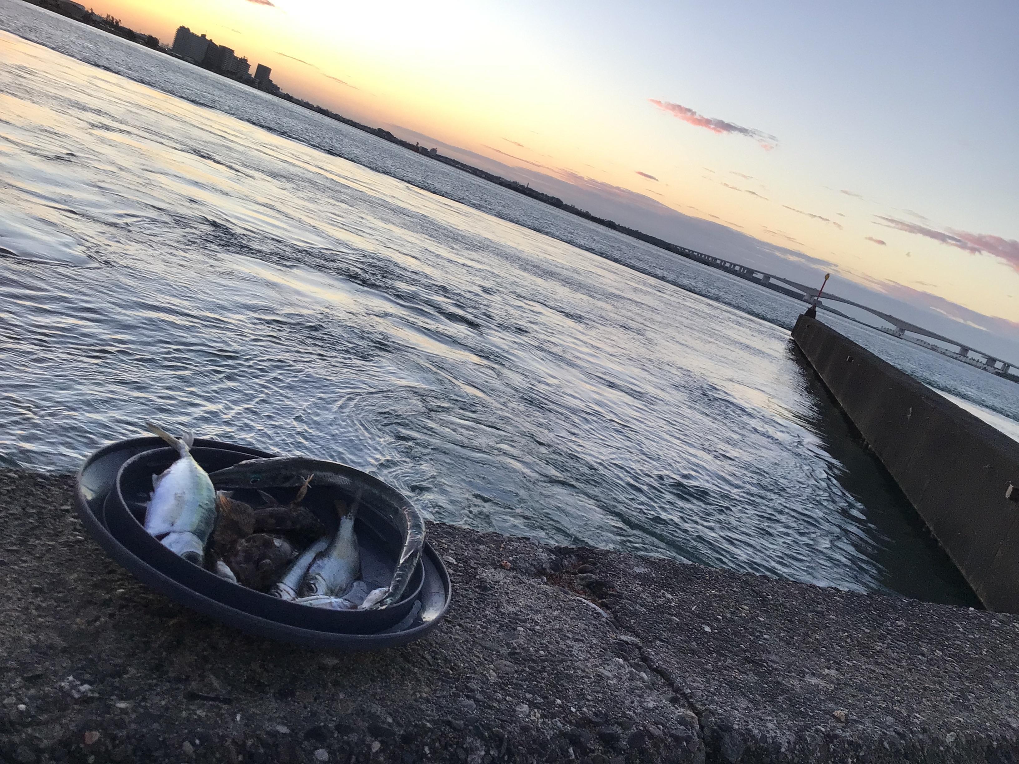 久々の砂揚げ場デス❗️、、、朝日まぶし〜