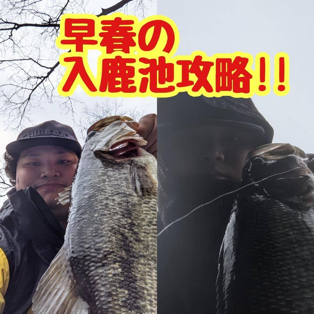【イシグロ半田店】【入鹿池】早春の入鹿池攻略!!