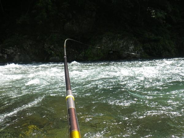 ゼロ釣法でのイナシ最高でした!