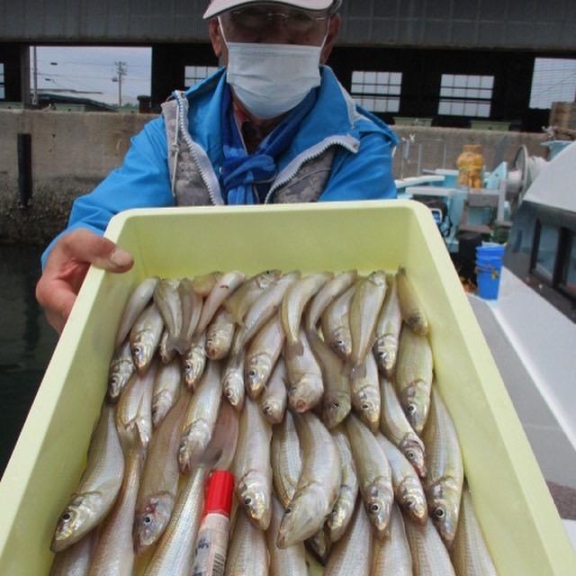 こちらのアシスタントも晩御飯のおかず以上のモロポチャギスを釣り上げましたよッ(^-^)