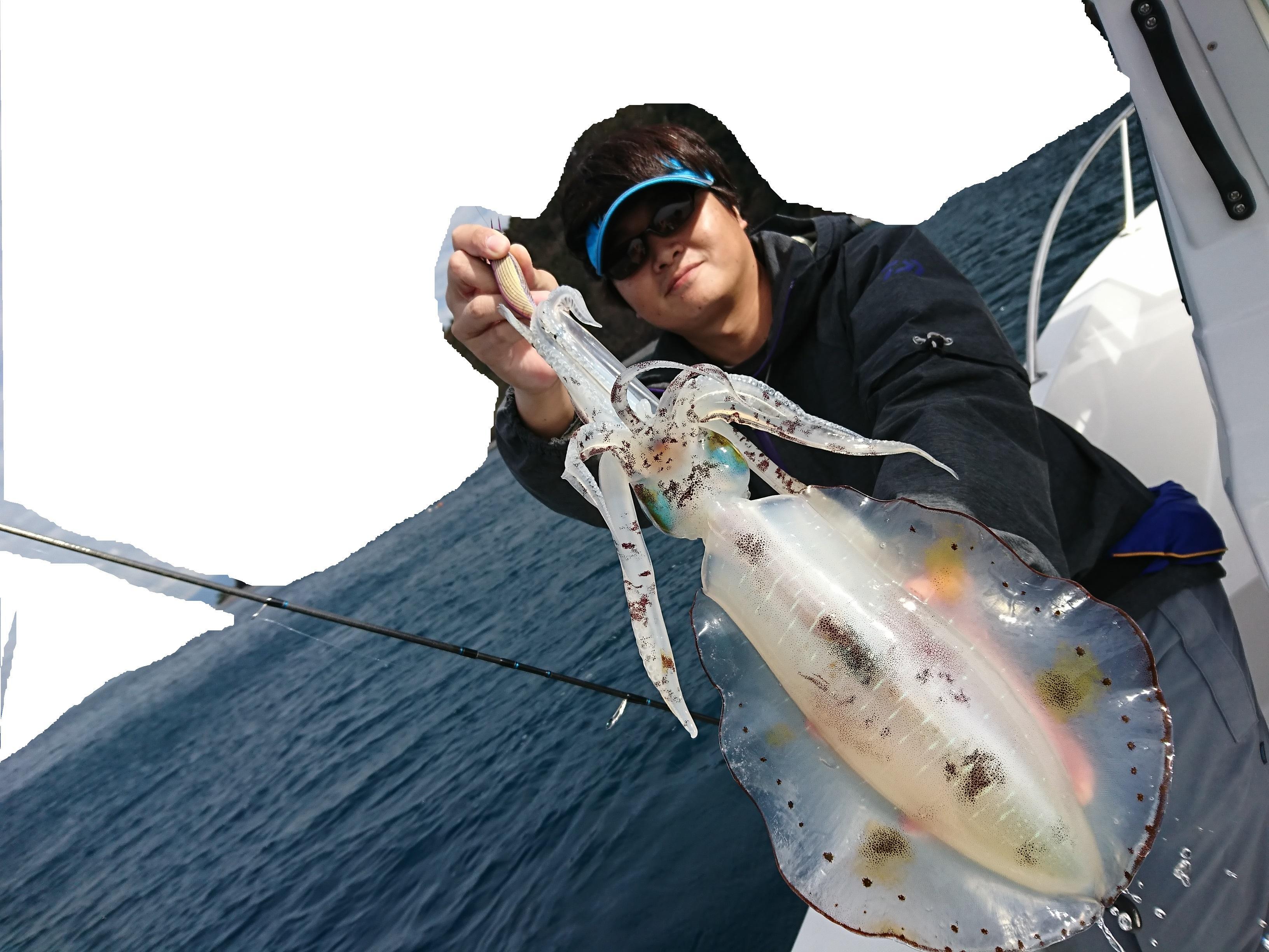ティップエギングで良型アオリイカ釣れました!