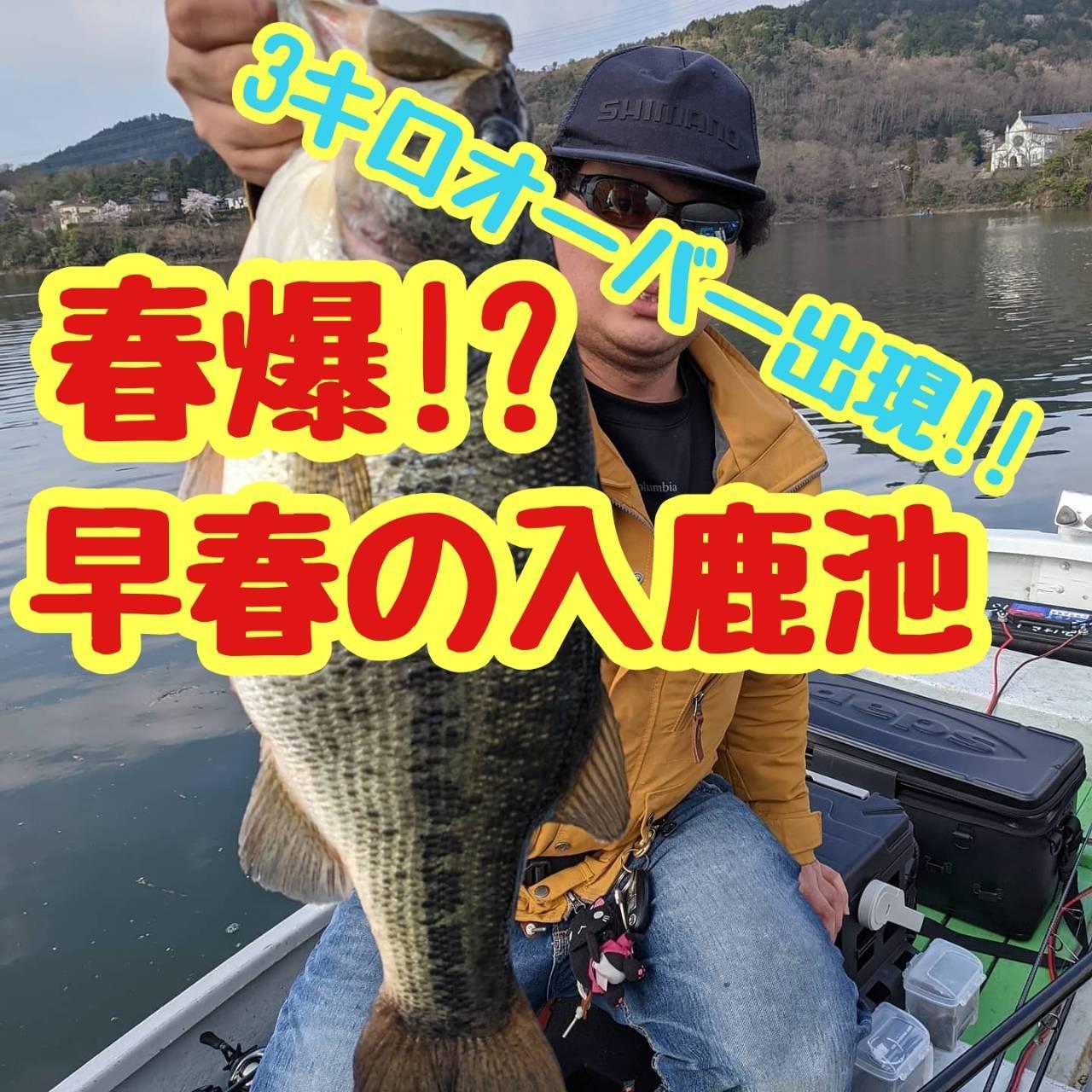 【イシグロ半田店】【入鹿池】春爆!!入鹿池産3キロオーバーのビッグモンスター出現!!