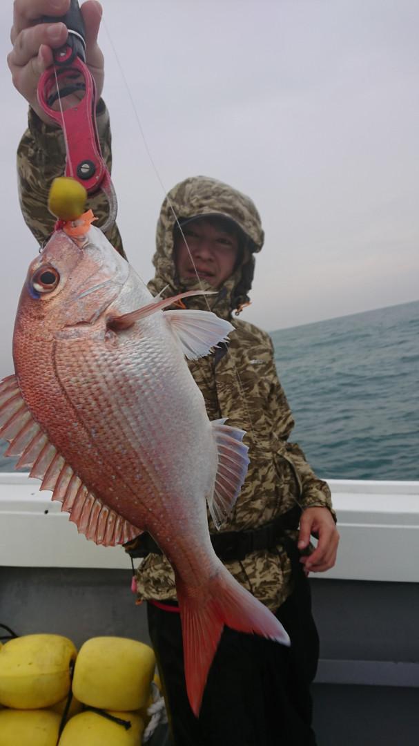 マダイの数釣りはできませんでしたが、いろいろな魚が釣れました!