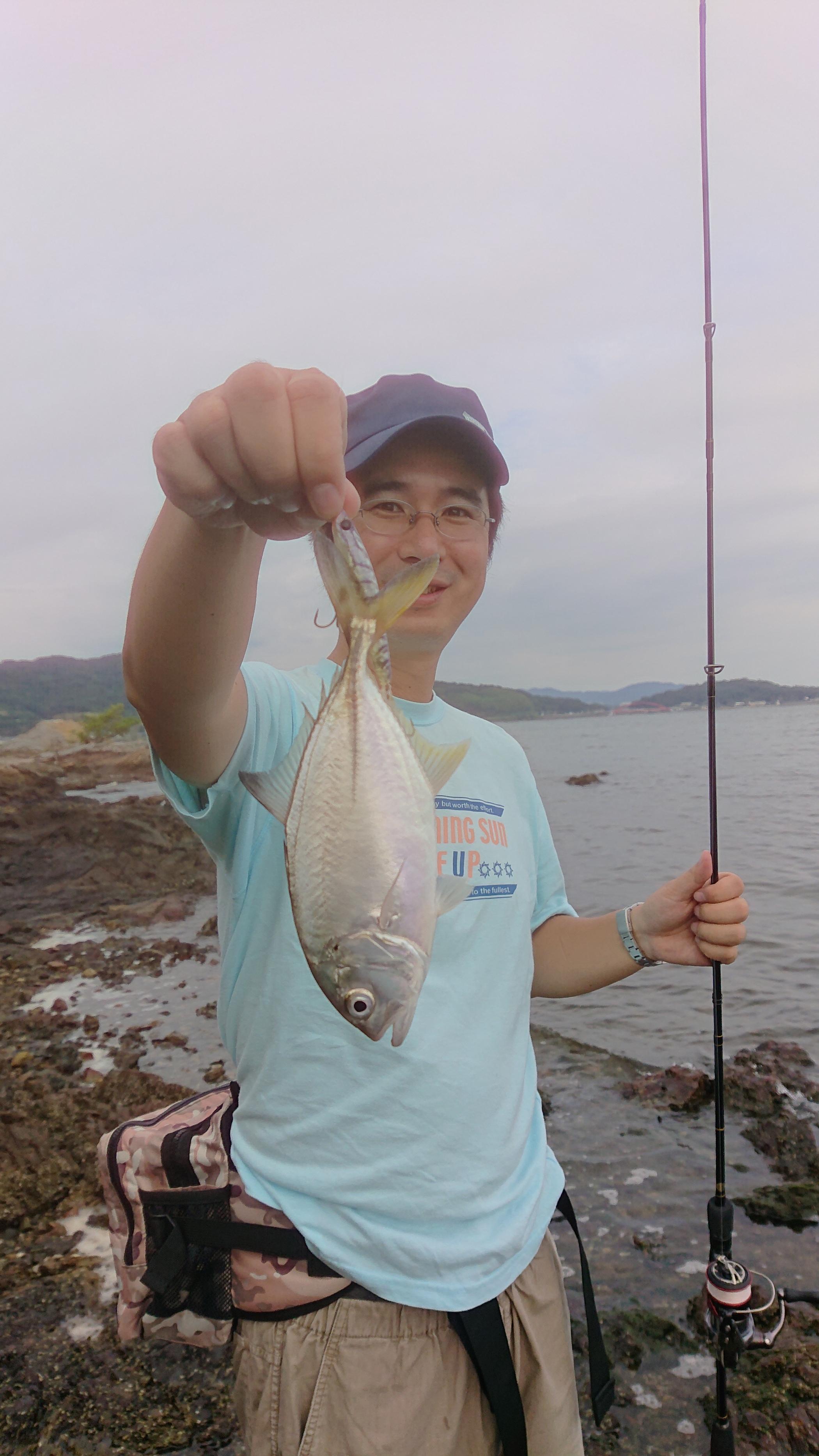 浜名 湖 釣果