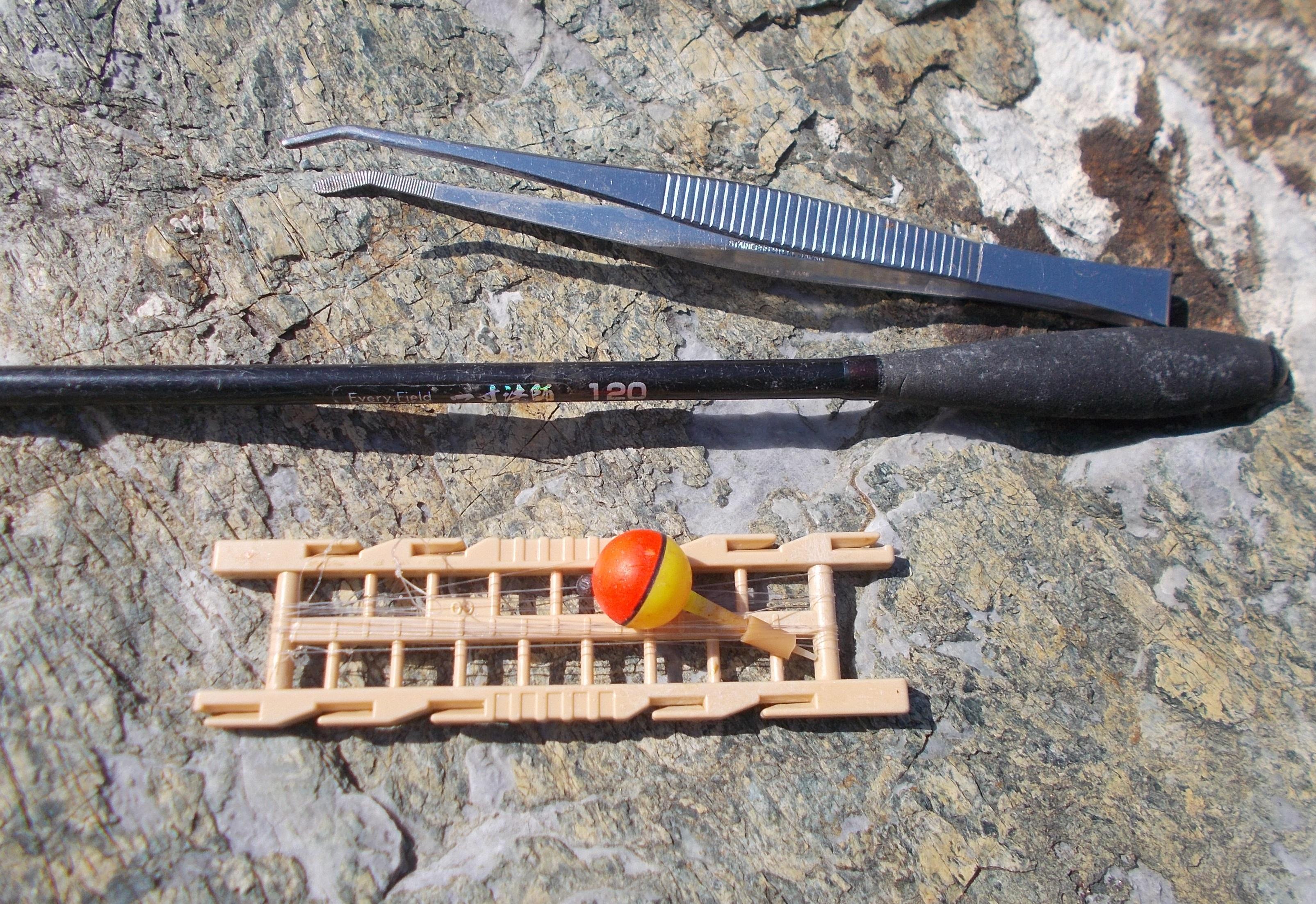 竿は短めの150㎝位が扱いやすいです。ピンセットはエビから針を外すのに便利ですよ。