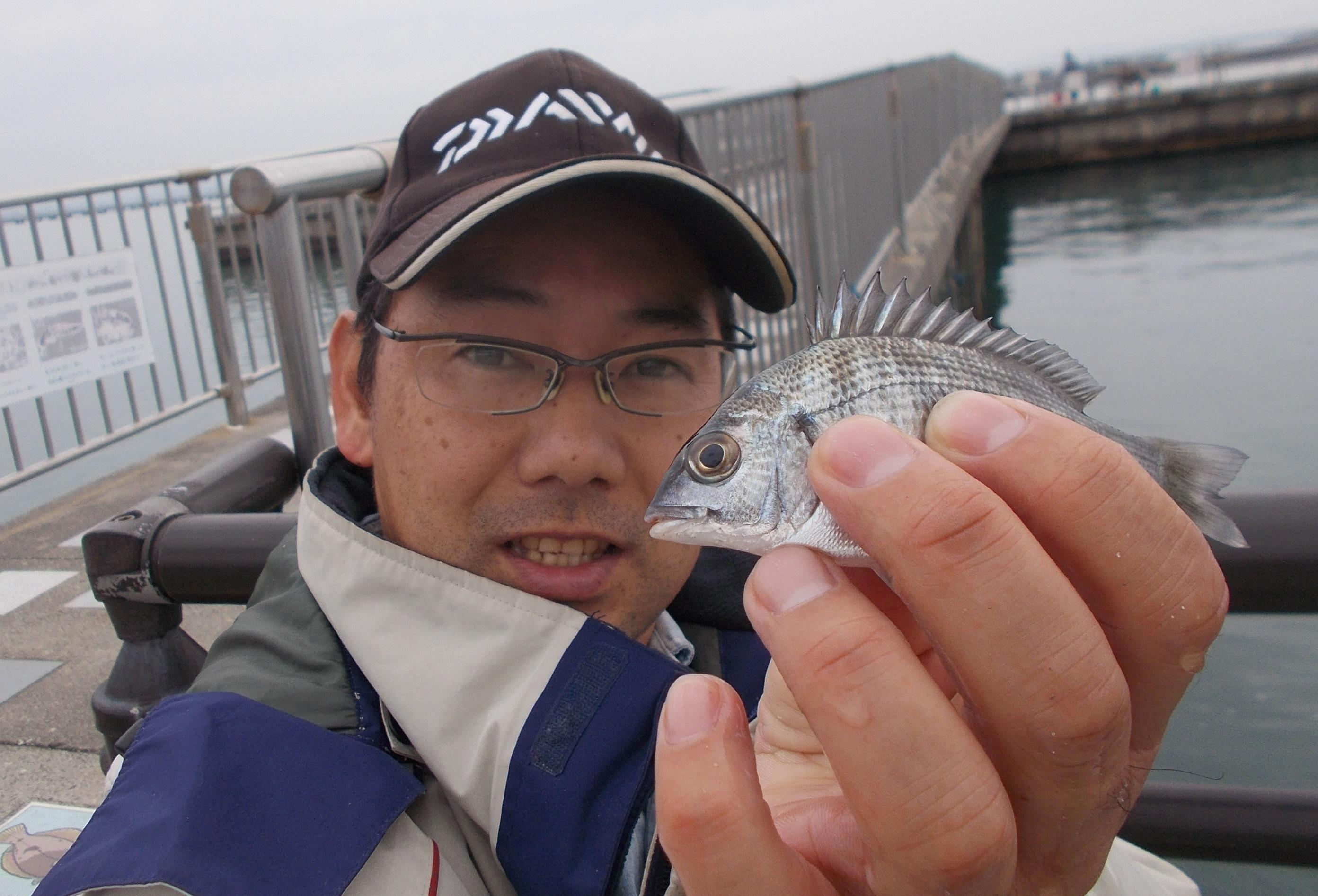 アジ狙いのはずが・・・サビキでチンタ(クロダイ)が入れ掛かり!周りでもたくさん釣れてましたよ。