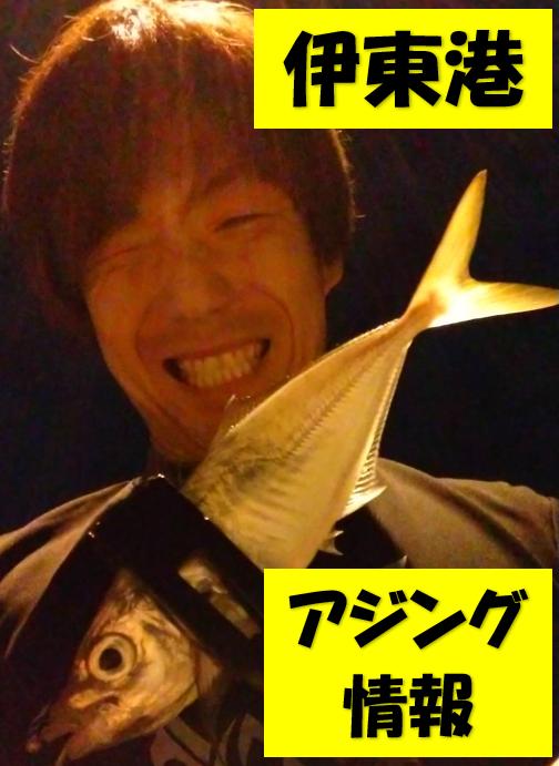 ユニチカフィールドテスター 和田様から アジング情報! まだまだ伊東港アジング釣れます!!
