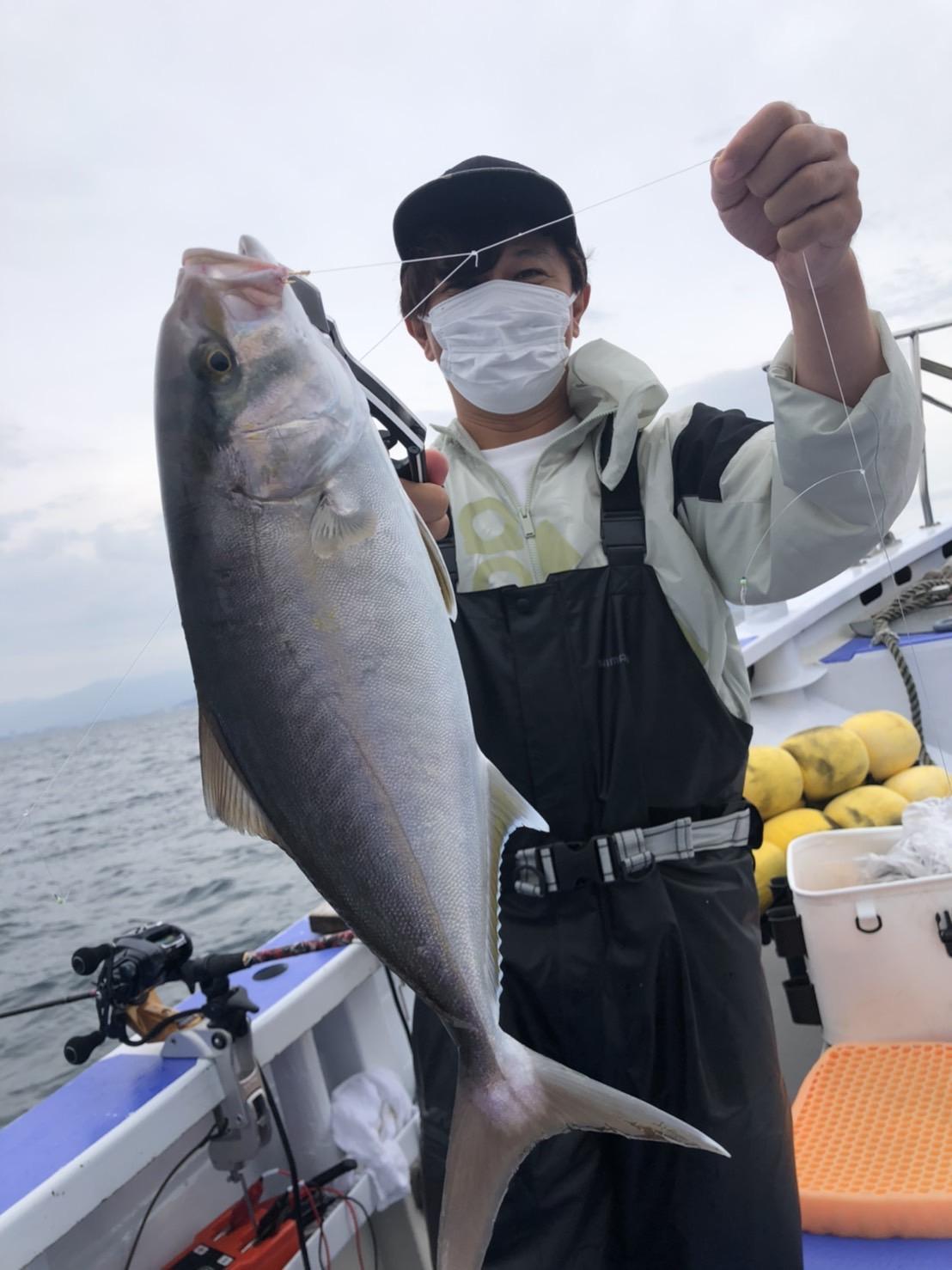アジの泳がせ、喰わせサビキ(落とし込み釣り)で良型のカンパチが釣れています!!